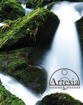 Сланец Artesia