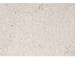 Известняк Simena fossile